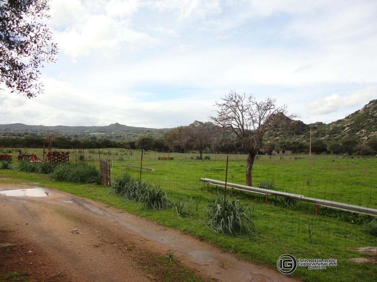 Terreno vendita OLBIA (OT) - 99 LOCALI - 585000 MQ